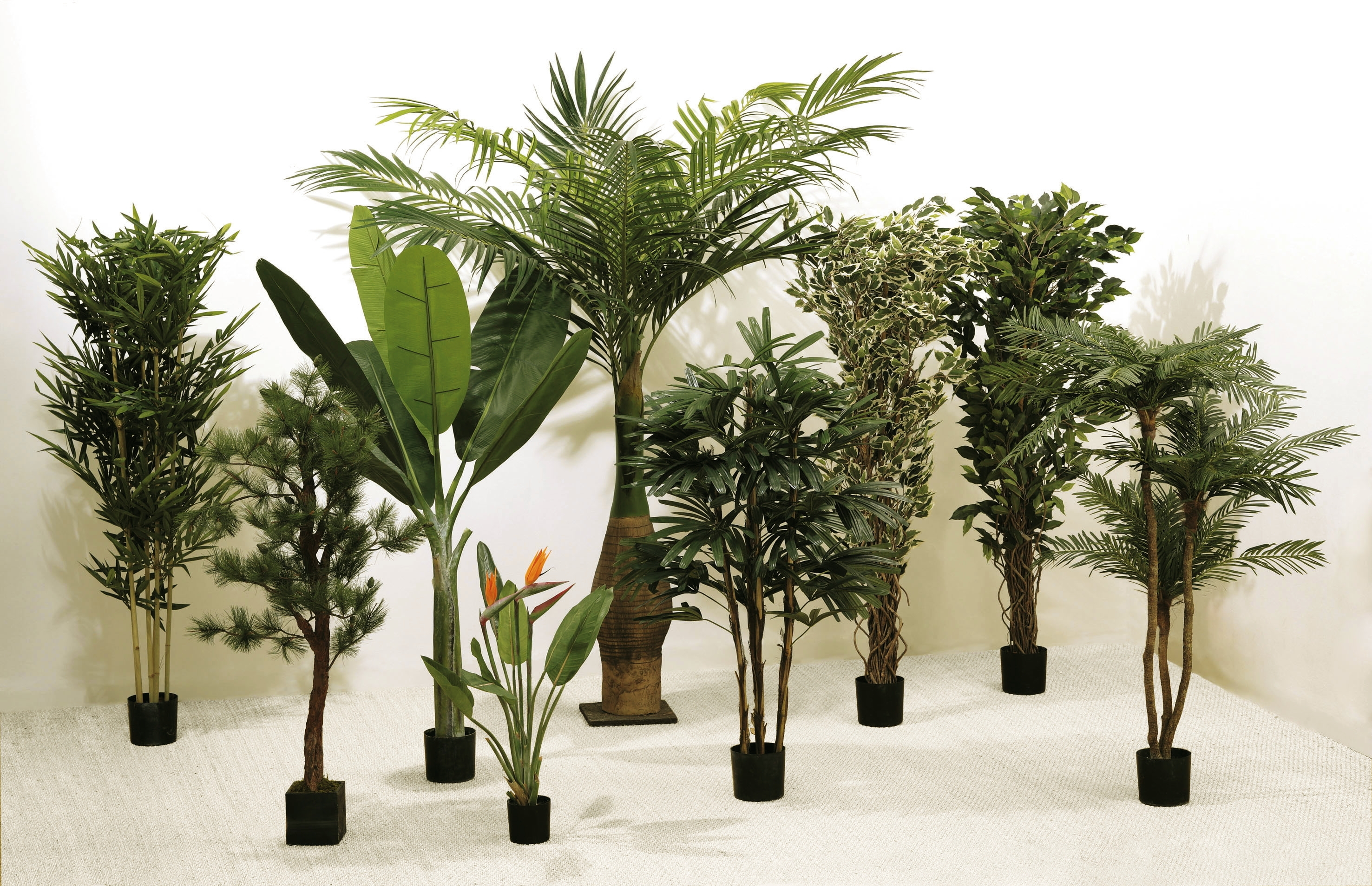 Plantes vertes artificielles remc homes for Plantes vertes